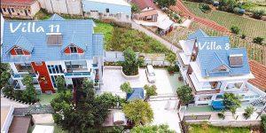 Villa Đà Lạt D011 - Villa sân vườn thoáng đạt