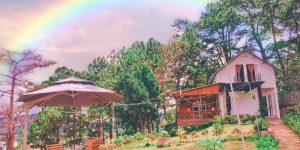 Villa Đà Lạt D132 - Căn nhà nhỏ dưới tán thông già