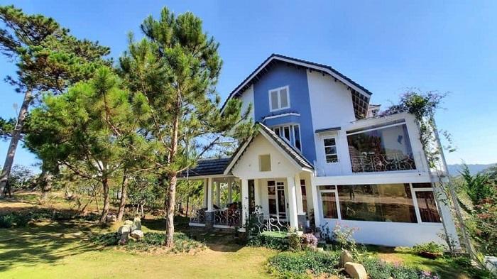 Villa Đà Lạt D133