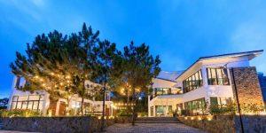 Villa Đà Lạt D146 - Thiết kế hiện đại, view rừng thông