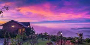 Villa Đà Lạt D197 - Căn nhà gỗ giữa khu vườn đầy hoa, view rừng xanh