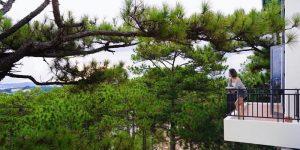 Villa Đà Lạt D242 - Villa nghỉ dưỡng cao cấp, view rừng thông
