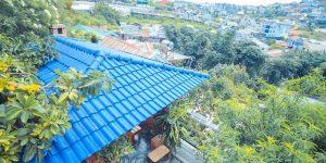 Villa Đà Lạt D059 - View Thung Lũng