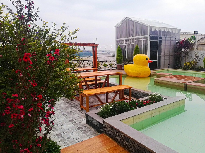 Villa Đà Lạt D056 - Bể bơi rộng