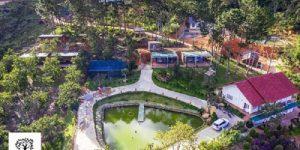 Villa Đà Lạt D053 - Villa giữa rừng thông